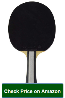 Palio Expert 2 ping pong paddle & Case