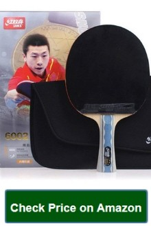 DHS 6-Star Premium Table Tennis Racket
