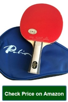 Expert Table Tennis Palio Expert 2
